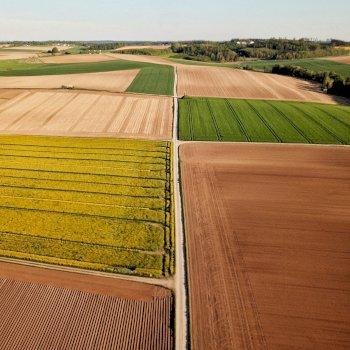 Aragor - Activité - Agriculture